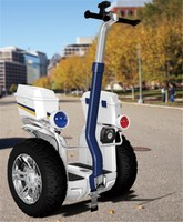Chic Jazz P1 premium quality big power electric scooter