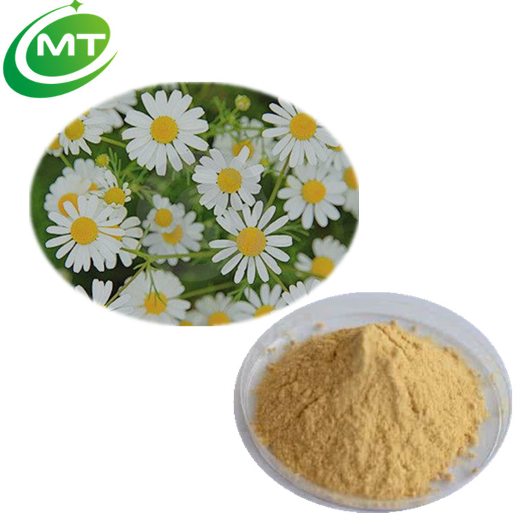 GMP manufacture beauty skin care cosmetic Daisy Extract