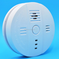 Europe standard cheap co detector