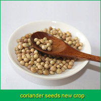 coriander seeds new crop