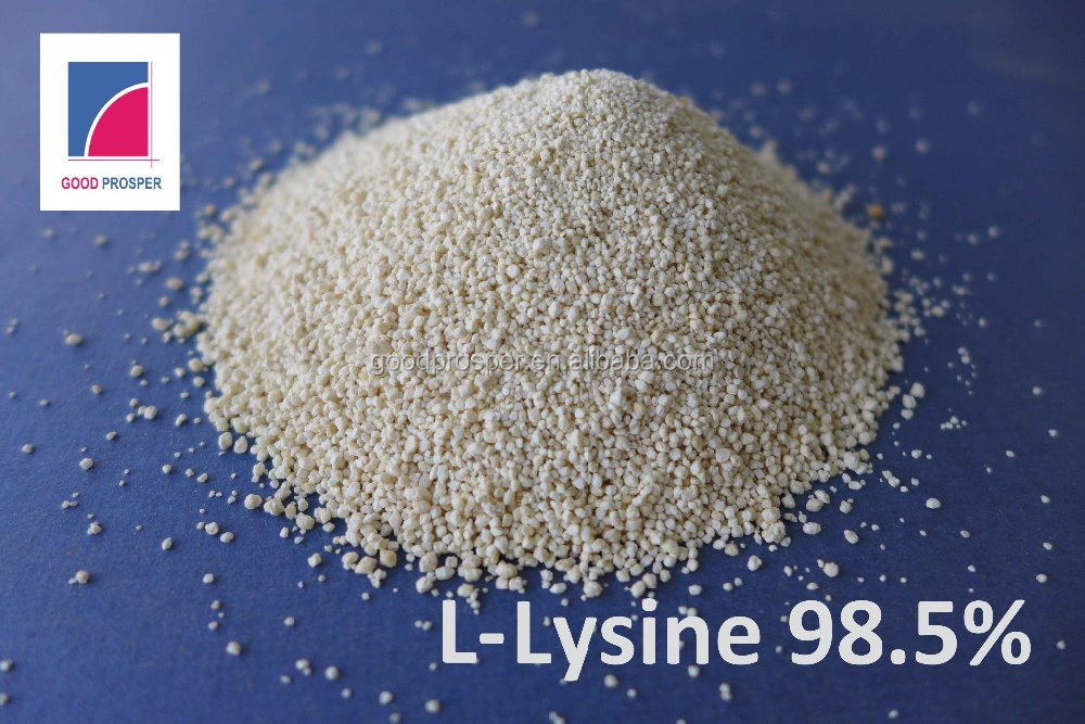 Lysine Supplier Since 2004