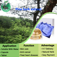 High quality pine bark extract/Proanthocyanidins 95%