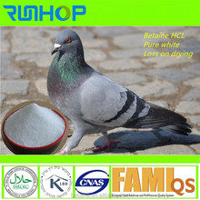 pigeon feed additive more white 98.5 % betaine HCL