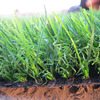 Factory Supply Garden Landscape Synthetic Grass