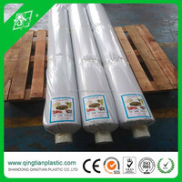 Multi Span Plastic Greenhouse Film For