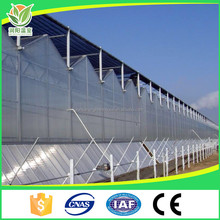 Low Cost Commercial Tomato Plastic Sheet Venlo LED Grow Light Agriculture Hydroponic Systems Used Greenhouse Frames Structure