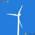 20kW high power wind turbine wind light complementary system