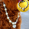 /product-detail/diamond-heart-pendant-pearl-jewellry-pet-supply-for-dog-and-cat-60369355575.html