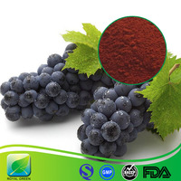 High Quality Cosmetic Grade Anti-aging Natural Pure OPC 95% Anthocyanins Grape Seed P.E.
