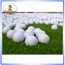 Golf ball/Personalized golf ball/2 Piece golf balls