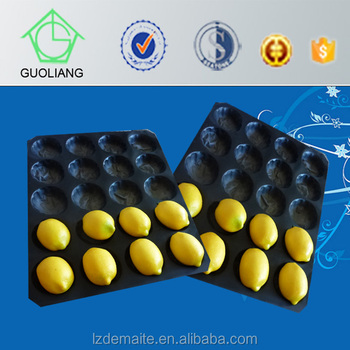 Fresh Produce Packaging FDA Approval Black Disposable Plastic Fruit Tray, Alveolus