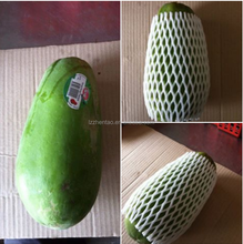 2015 Top Selling Expandable Disposable Cheap Food Grade EPE Foam Fruit Packaging Protective Sleeve Net