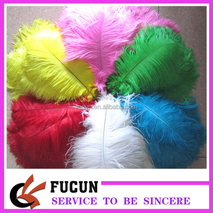ostrich feather.jpg