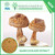 Natural Agaricus Blazei Murill Mushroom Extract
