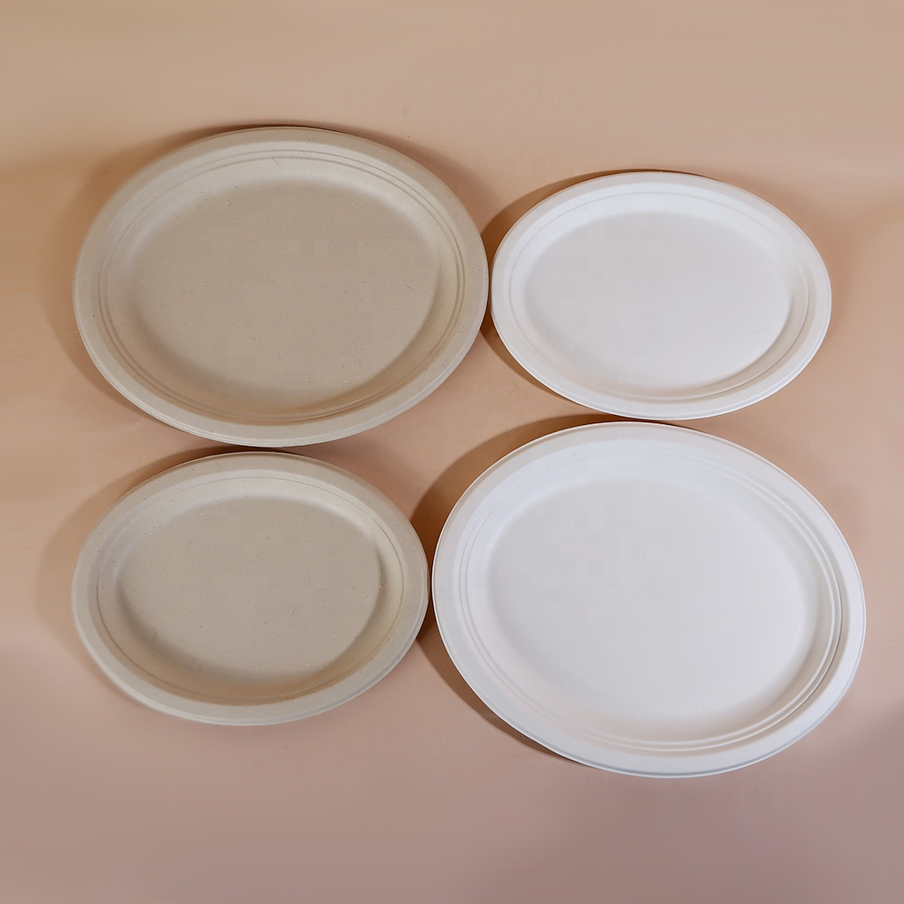 New Arrive Stock Eco Sugarcane Bagasse Tableware Tray/Plate/Food Container/Bowl