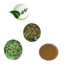 High quality cleaning skin soapnut extract powder with 70% Saponins