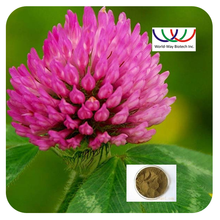 Factroy Price Debenzolized Red Clover Extract (Trifolium Pratense L.) with HACCP/FDA/KOSHER certification