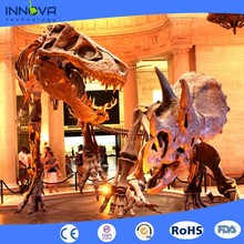 Innova-Museum Exhibition Dinosaur Fossil Replica Simulation Skeleton of Plesiosaur