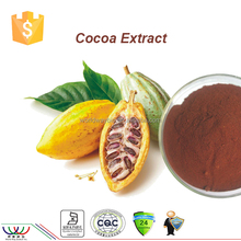 China GMP manufacturer favorable cocoa extract price free sample 40% polyphenols cocoa extract
