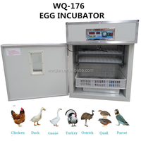 Automatic 176 Professional incubator fertile hatching chicken eggs for sale made in China