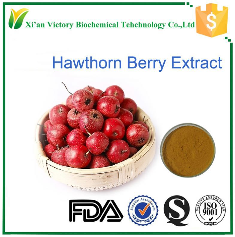 food additives best price hawthorn berry/leaf extract