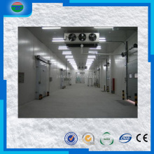 China good supplier discount medical cold storage room