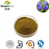 Pure Natural Shikone Extract,Arnebia root extract with Shikonin