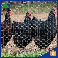 hexagonal wire mesh 10mm/heavy duty chicken wire/chicken wire cage
