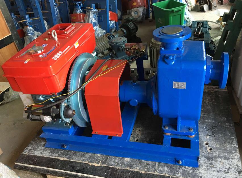 Cyz Self Priming Electric Motor And Diesel Engine Clean
