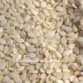 Seasum Seed White