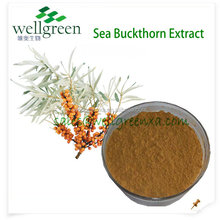 sea buckthorn berry powder/seabuckthorn extract flavones/sea buckthorn fruit extract