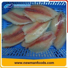 Skinless frozen tilapia fillet wholesale cheap types of canned fish factory wholesalers