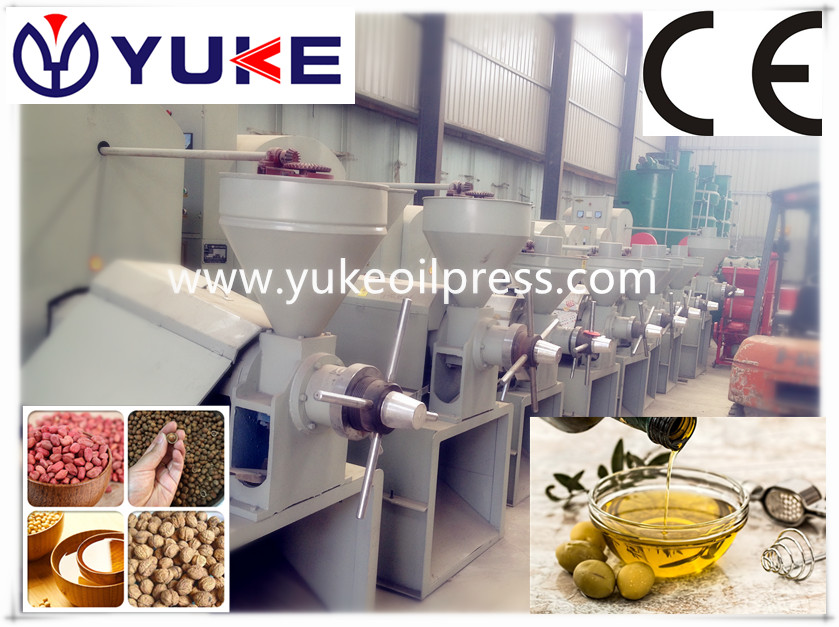 palm kernel oil extraction machine/ hydraulic oil press machine