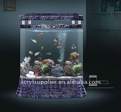 Clear acrylic Gold fish tank with the modern Design Goldfish