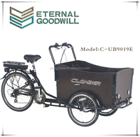 2016 Classic 3 wheel electric cargo bike/reverse trike/electric tricycle for adult UB9019E