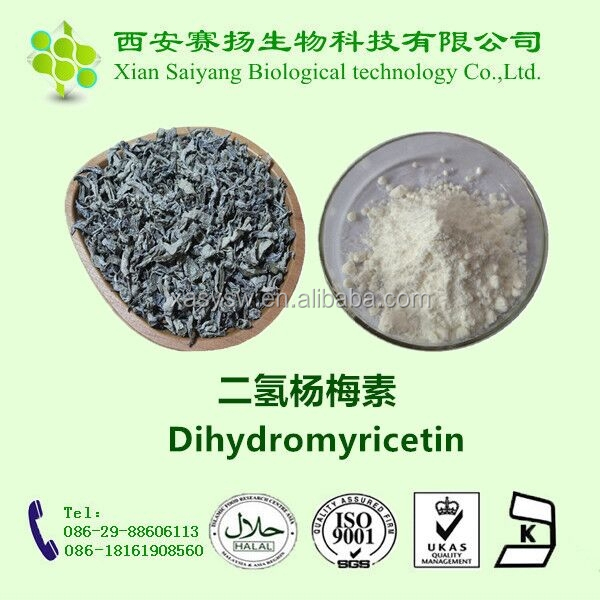 Natural High Quality Vine/Moyeam Tea Extracted Dihydromyricetin 98% Powder