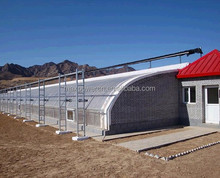 solar greenhouse construction costs