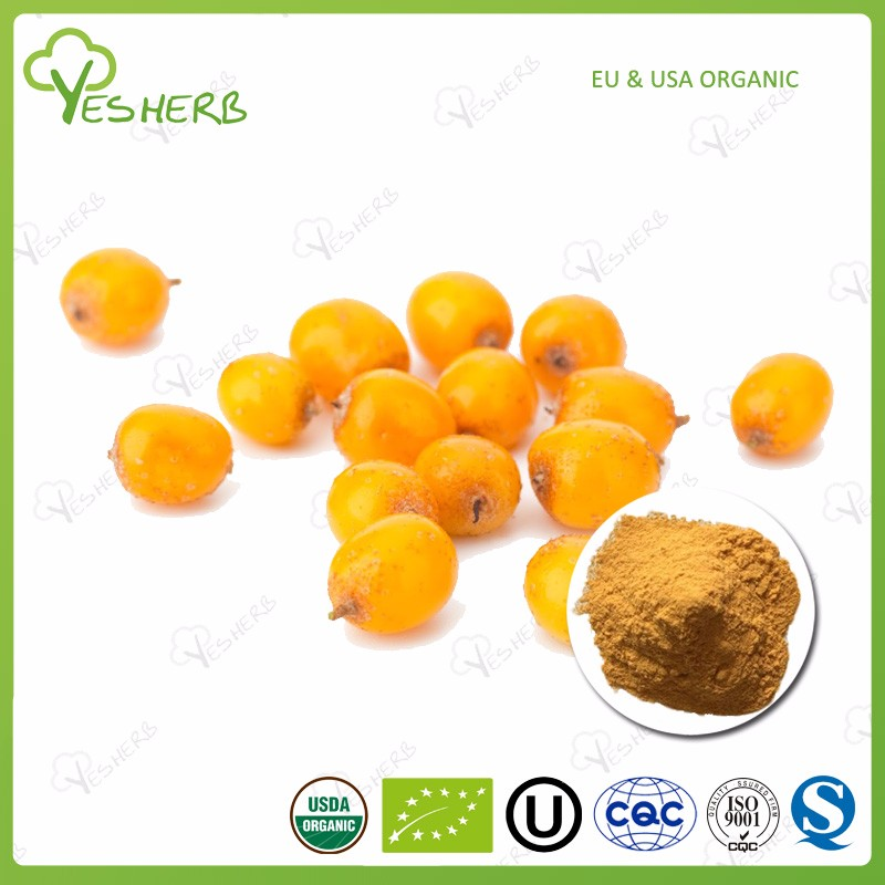 Manufacturer sea buckthorn powder seabuckthorn concentrate juice