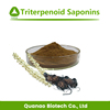 Sexual Improvement Black Cohosh Extract Triterpene Glycosides / Triterpenoid Saponins 2.5%-8%