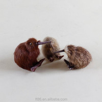 Lifelike artificial birds miniature kiwi bird