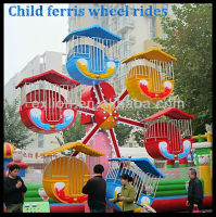 12 months warranty mini ferris wheel roller coaster supplier