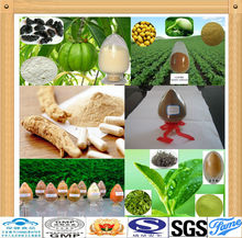 piperine pepper extract powder raw material garcinia cambogia extract