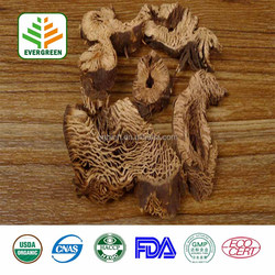 Best Selling Product Black Cohosh Root Extract Fine Powder