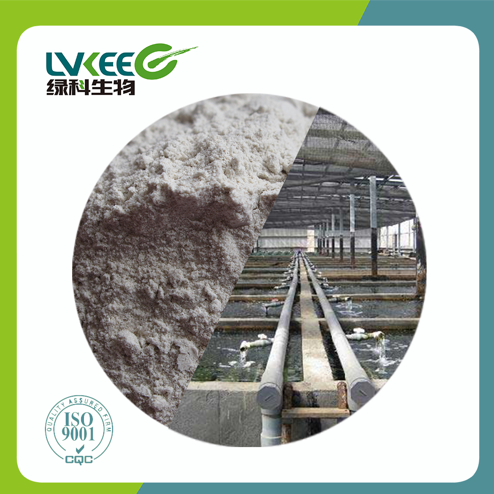 Soil Fertilizer/Chick/Fish/Cattle Organic Fermentation powder Bacillus Amyloliquefaciens from Top Supplier Lvkee
