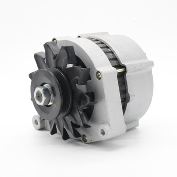 Wholesale Quality Reliable Energy Generator 12V Mini Alternator