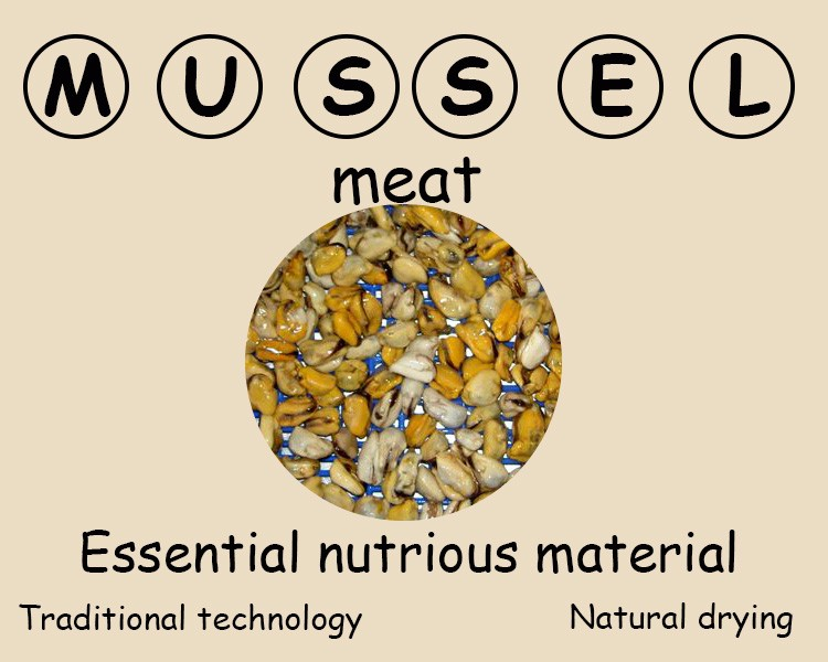 High quality cooked mussels with 1Kg/Bag or 10Kg/CTN Bulk Package