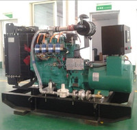 8-500kw hot sales bio electric generator with ISO 9001