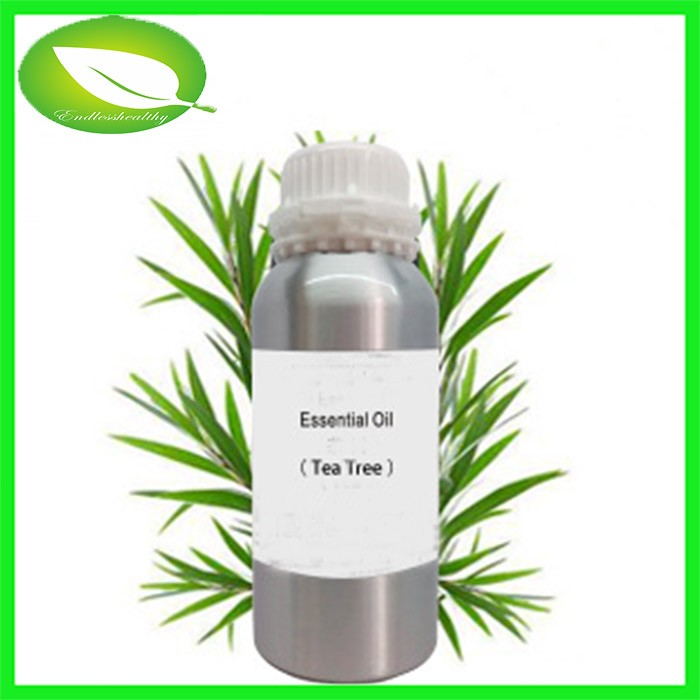 Low price private label tea tree oil products pure tea tree oil bulk wholesale