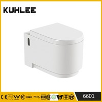 KL-6601 Outdoor porcelain wall hung toilet