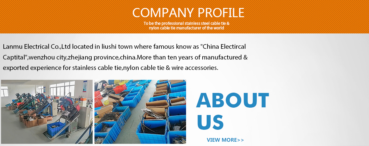 Wenzhou Lanmu Electrical Co., Ltd. - Stainless Steel Cable Tie ...